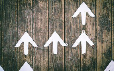 Comment diminuer ses charges sociales et augmenter sa rémunération quand on est micro-entrepreneur (auto-entrepreneur) ?
